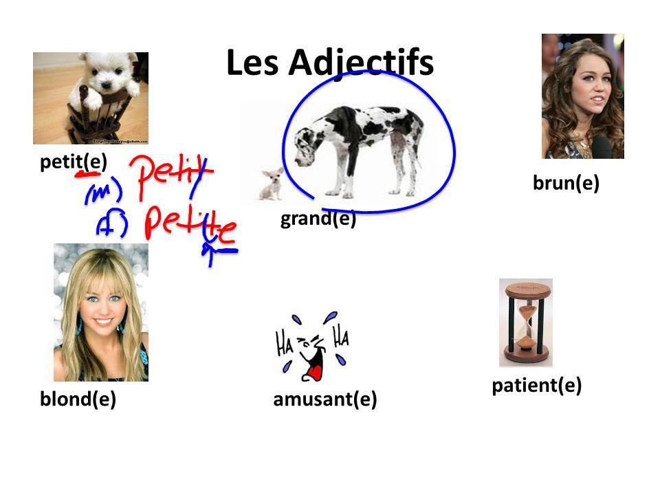 Les Adjectifs petit(e) grand(e) brun(e) blond(e)amusant(e) patient(e)