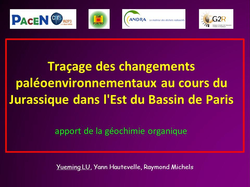 Traçage des changements paléoenvironnementaux au cours du Jurassique dans l'Est du Bassin de Paris apport de la géochimie organique Yueming LU, Yann H