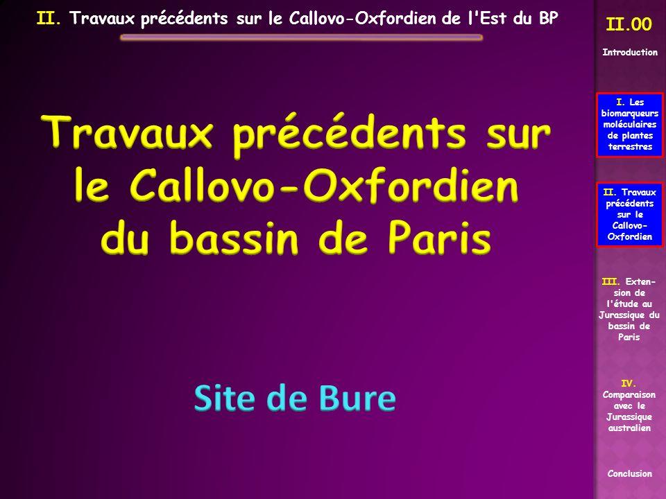 II.00 II. Travaux précédents sur le Callovo- Oxfordien Conclusion I. Les biomarqueurs moléculaires de plantes terrestres III. Exten- sion de l'étude a