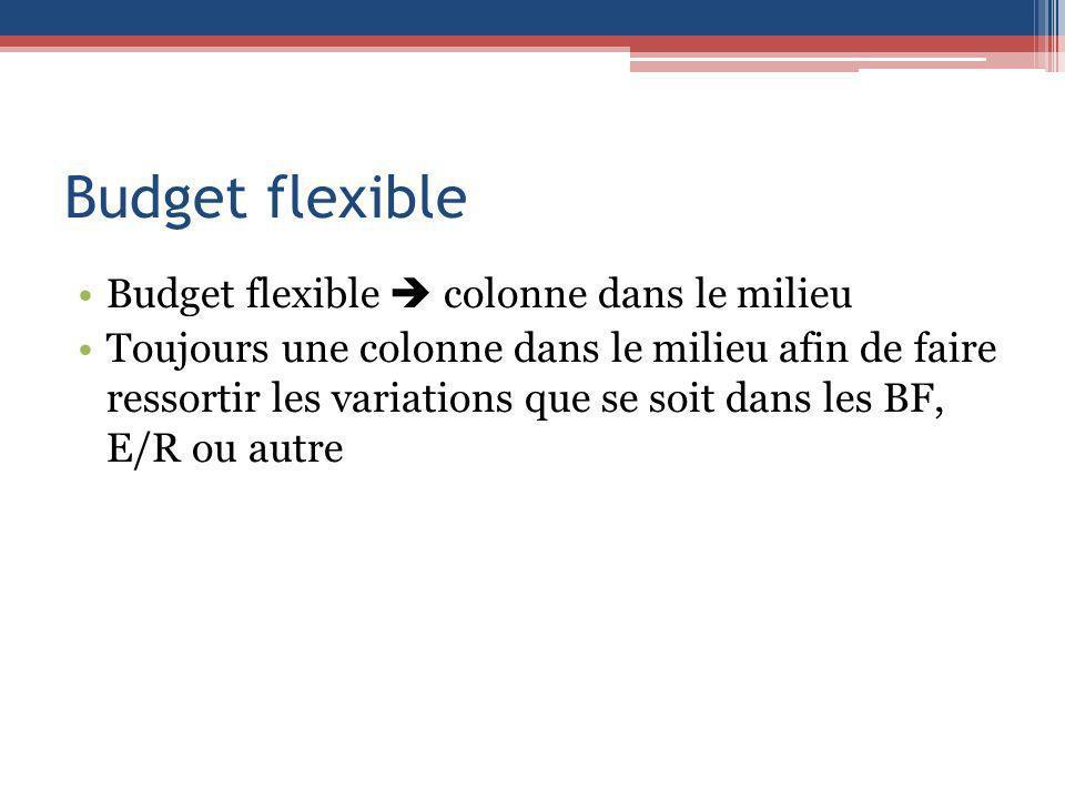 Budget flexible Budget flexible colonne dans le milieu Toujours une colonne dans le milieu afin de faire ressortir les variations que se soit dans les