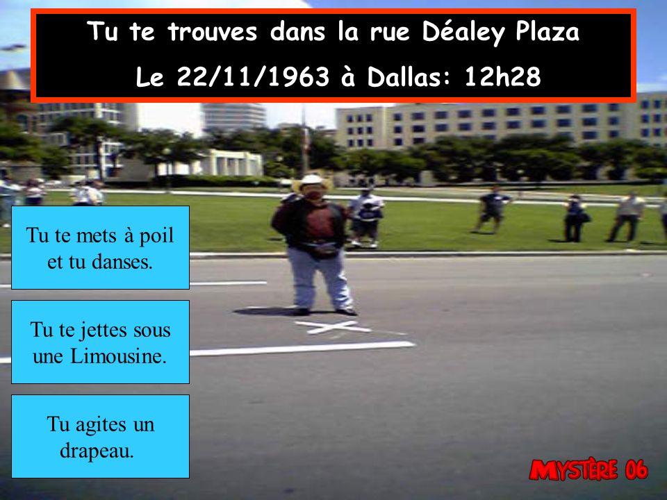 Tu te trouves dans la rue Déaley Plaza Le 22/11/1963 à Dallas: 12h28 Tu agites un drapeau.