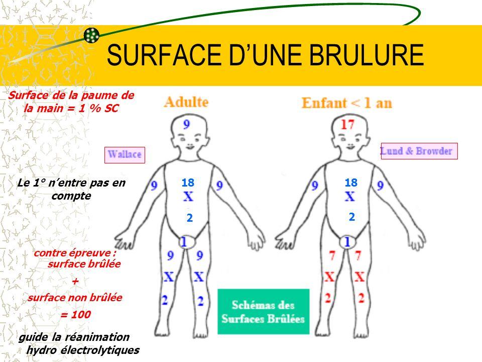 23 SURFACE DUNE BRULURE Surface de la paume de la main = 1 % SC guide la réanimation hydro électrolytiques contre épreuve : surface brûlée + surface n