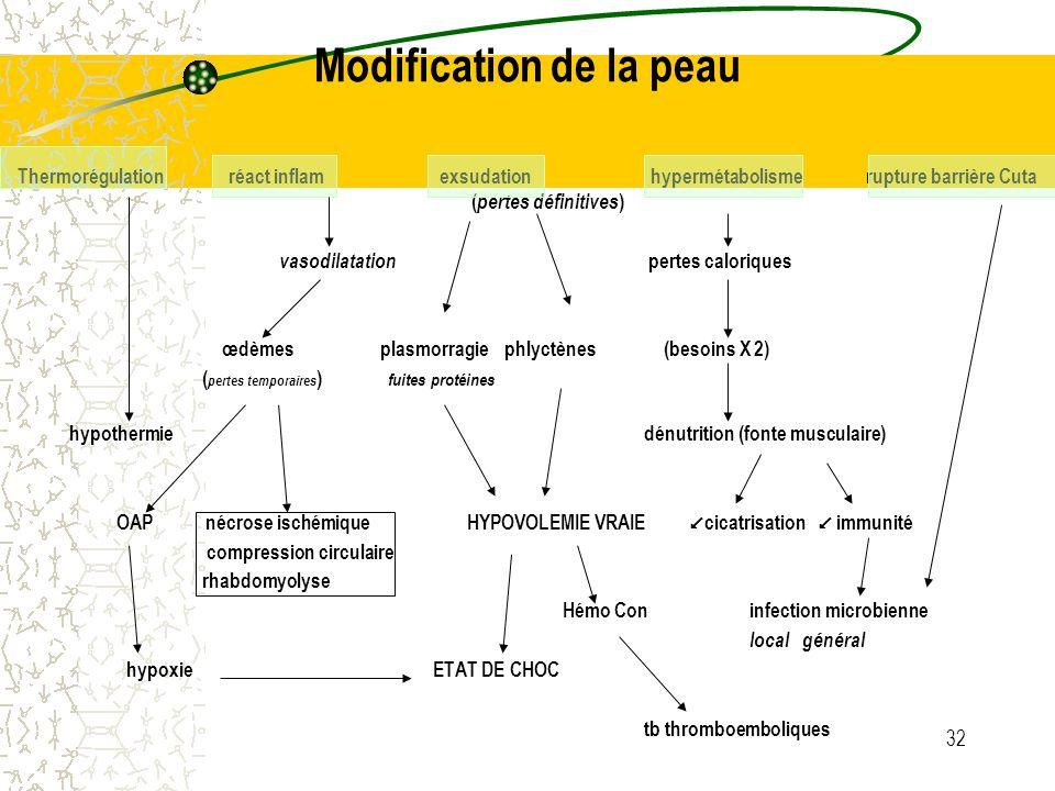 32 Modification de la peau Thermorégulationréact inflamexsudation hypermétabolisme rupture barrière Cuta ( pertes définitives ) vasodilatation pertes