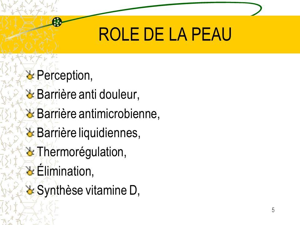 5 ROLE DE LA PEAU Perception, Barrière anti douleur, Barrière antimicrobienne, Barrière liquidiennes, Thermorégulation, Élimination, Synthèse vitamine