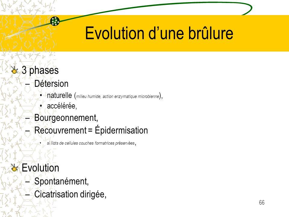 66 Evolution dune brûlure 3 phases –Détersion naturelle ( milieu humide, action enzymatique microbienne ), accélérée, –Bourgeonnement, –Recouvrement =