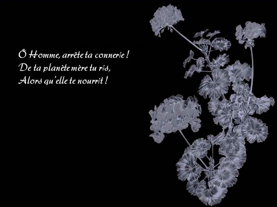 Texte : Aurélie Connoir Images trouvées sur le Web Musique : Rachmaninov- concerto Op30 Jacky Questel : 2005