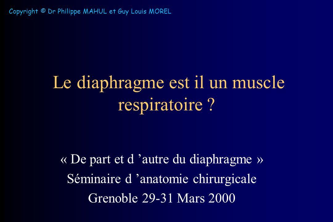 Le diaphragme est il un muscle respiratoire .