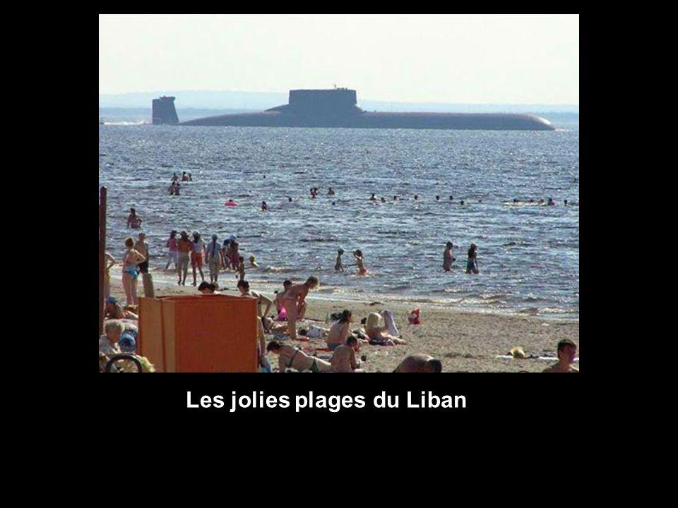 Les jolies plages du Liban