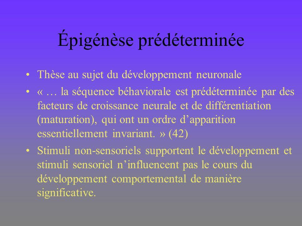Épigénèse prédéterminée Thèse au sujet du développement neuronale « … la séquence béhaviorale est prédéterminée par des facteurs de croissance neurale