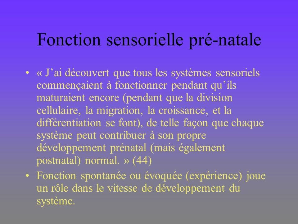 Fonction sensorielle pré-natale « Jai découvert que tous les systèmes sensoriels commençaient à fonctionner pendant quils maturaient encore (pendant q