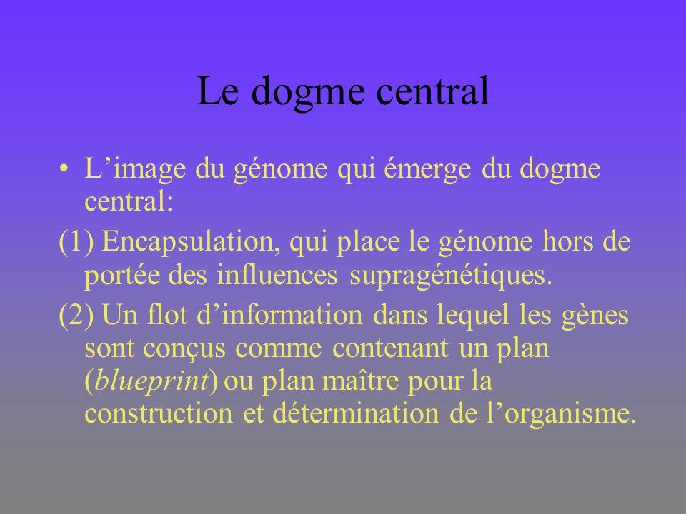 Le dogme central Limage du génome qui émerge du dogme central: (1) Encapsulation, qui place le génome hors de portée des influences supragénétiques. (