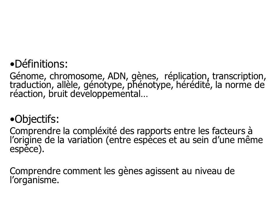 Définitions: Génome, chromosome, ADN, gènes, réplication, transcription, traduction, allèle, génotype, phénotype, hérédité, la norme de réaction, brui