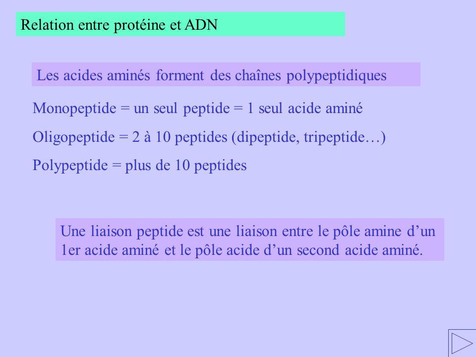 Du Génome au proténome Livre p.