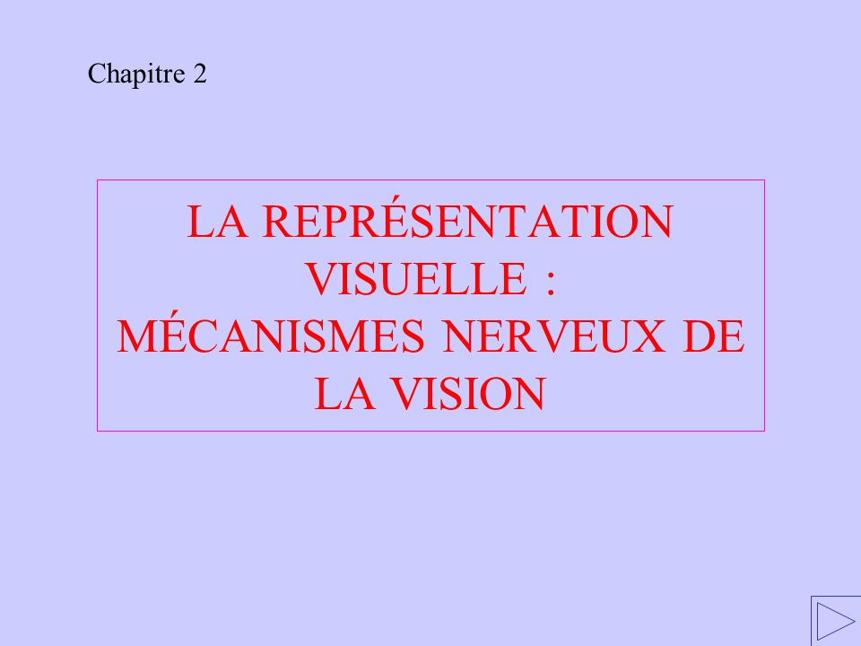 LA REPRÉSENTATION VISUELLE : MÉCANISMES NERVEUX DE LA VISION Chapitre 2
