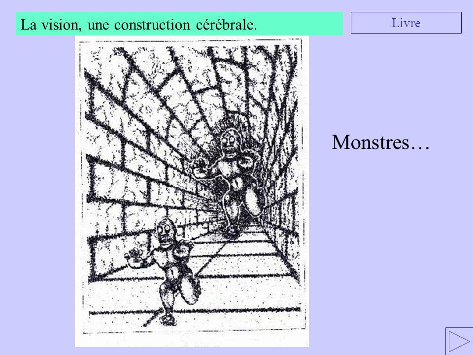 La vision, une construction cérébrale. Livre Monstres…