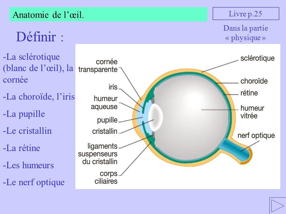 Anatomie de lœil. Livre p.25 Définir : -La sclérotique (blanc de lœil), la cornée -La choroïde, liris -La pupille -Le cristallin -La rétine -Les humeu