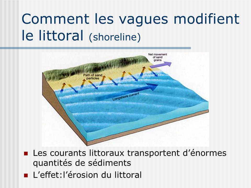 Comment les vagues modifient le littoral (shoreline) Les courants littoraux transportent dénormes quantités de sédiments Leffet:lérosion du littoral
