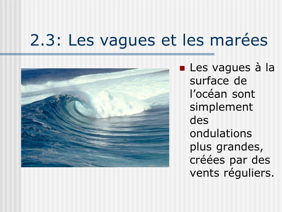 2.3: Les vagues et les marées Les vagues à la surface de locéan sont simplement des ondulations plus grandes, créées par des vents réguliers.