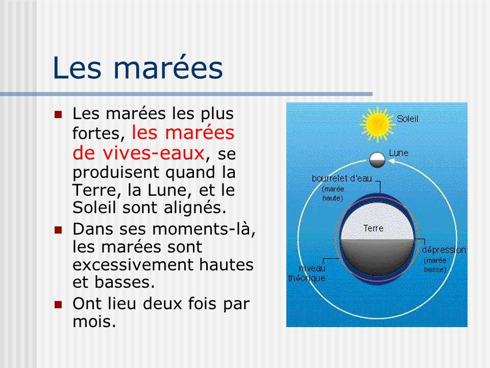 Les marées Les marées les plus fortes, les marées de vives-eaux, se produisent quand la Terre, la Lune, et le Soleil sont alignés. Dans ses moments-là