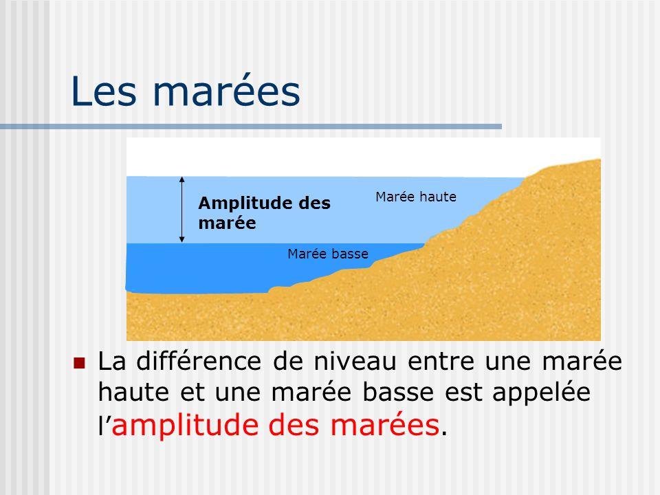Les marées La différence de niveau entre une marée haute et une marée basse est appelée l amplitude des marées. Amplitude des marée Marée basse Marée