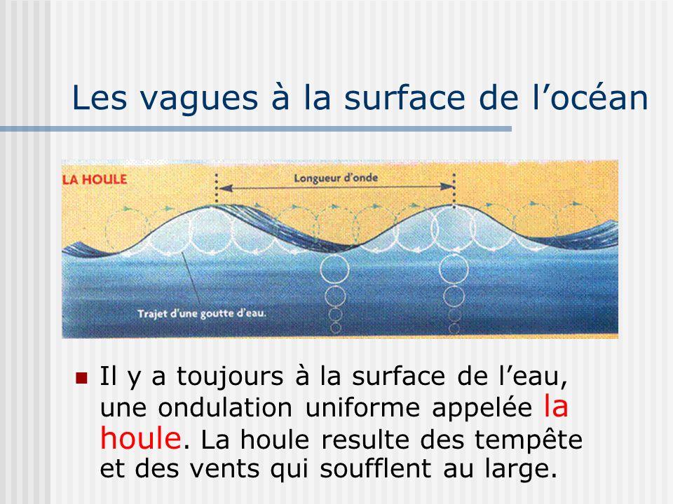 Les vagues à la surface de locéan Il y a toujours à la surface de leau, une ondulation uniforme appelée la houle. La houle resulte des tempête et des