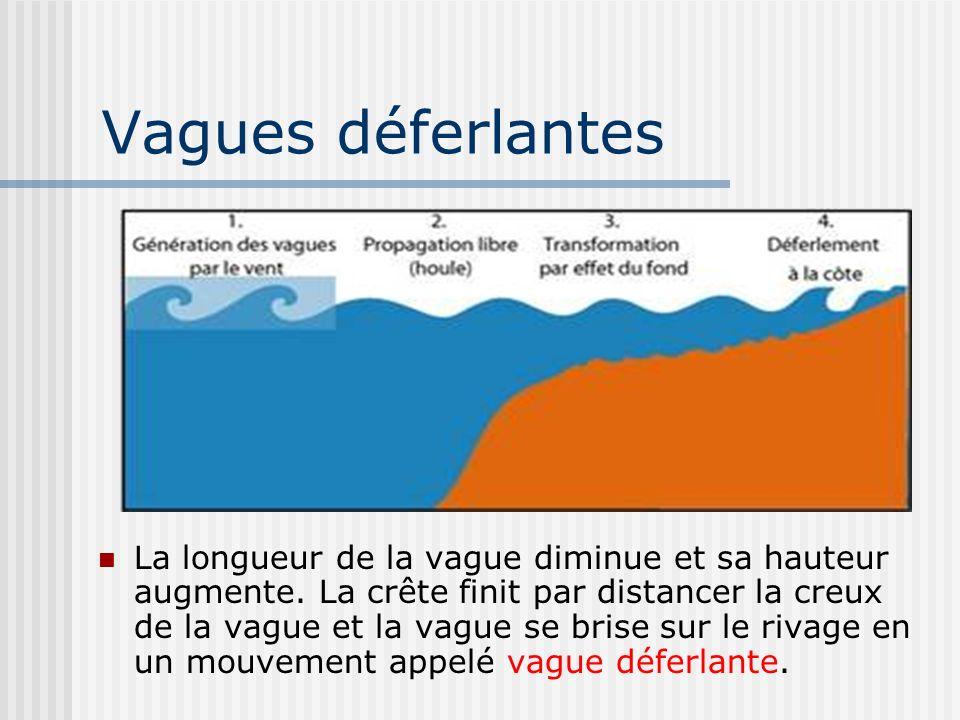 Vagues déferlantes La longueur de la vague diminue et sa hauteur augmente. La crête finit par distancer la creux de la vague et la vague se brise sur