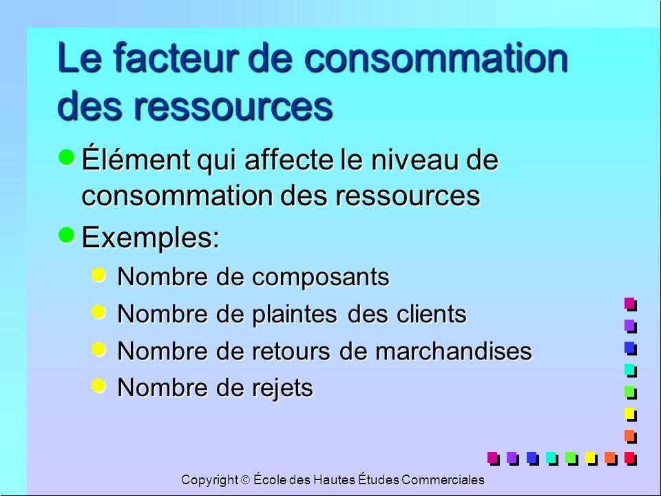 Copyright École des Hautes Études Commerciales Le facteur de consommation des ressources Élément qui affecte le niveau de consommation des ressources