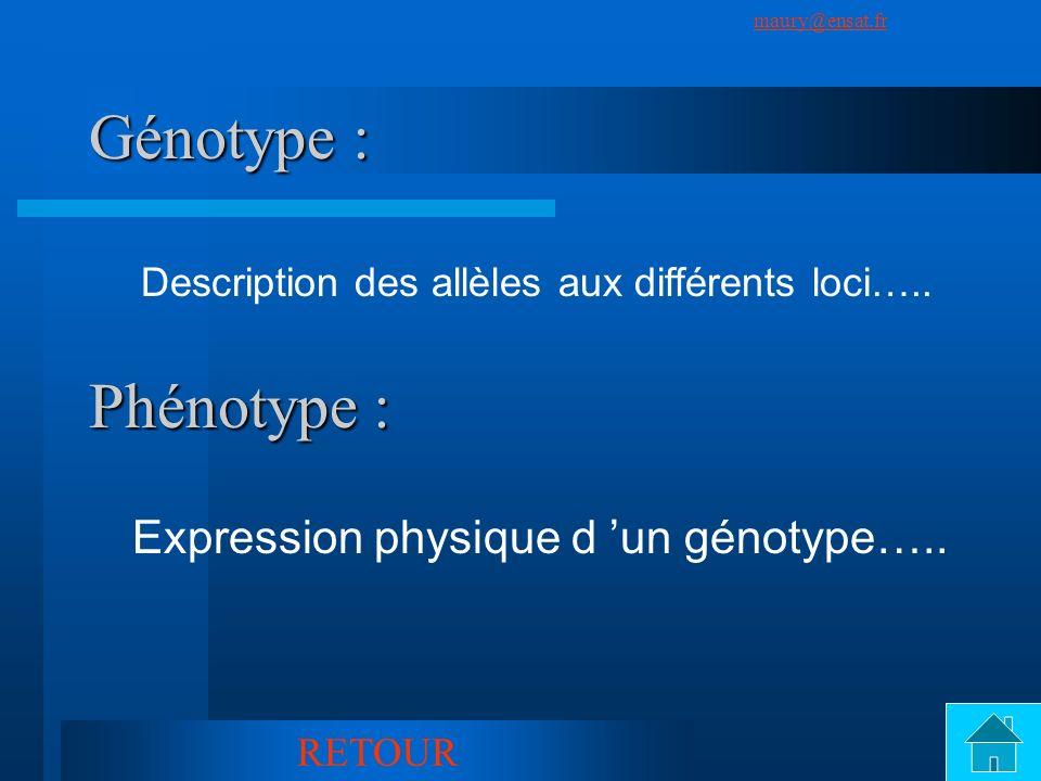 SuivantPrécédent maury@ensat.fr 11 Génotype : Description des allèles aux différents loci….. Phénotype : Expression physique d un génotype….. RETOUR