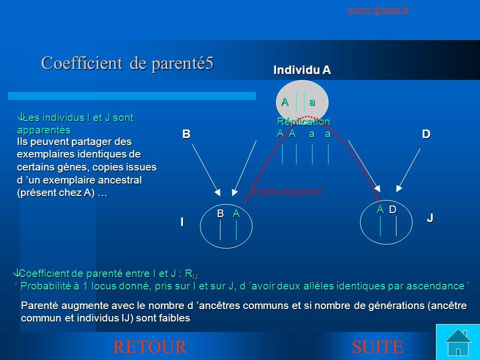 SuivantPrécédent maury@ensat.fr 18 Coefficient de parenté5 B IDJ Aa Individu A A A B D âLes individus I et J sont apparentés RETOUR Ils peuvent partag