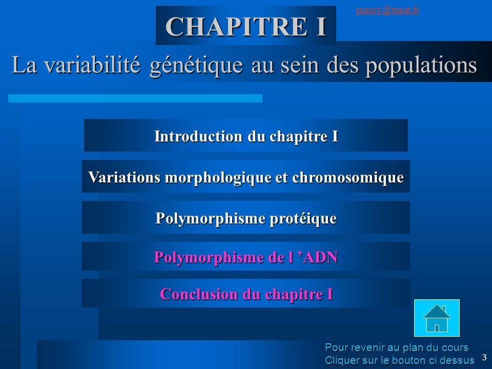 SuivantPrécédent maury@ensat.fr 3 La variabilité génétique au sein des populations CHAPITRE I Introduction du chapitre I Variations morphologique et c