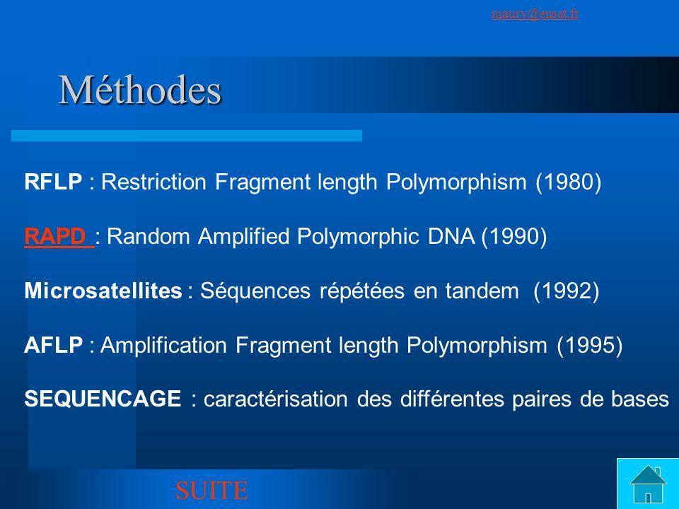 SuivantPrécédent maury@ensat.fr 6 Méthodes RFLP : Restriction Fragment length Polymorphism (1980) RAPD RAPD : Random Amplified Polymorphic DNA (1990)