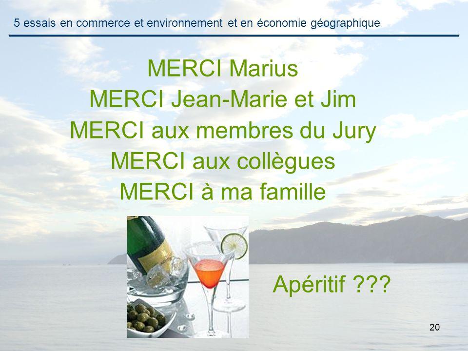 20 MERCI Marius MERCI Jean-Marie et Jim MERCI aux membres du Jury MERCI aux collègues MERCI à ma famille Apéritif ??? 5 essais en commerce et environn