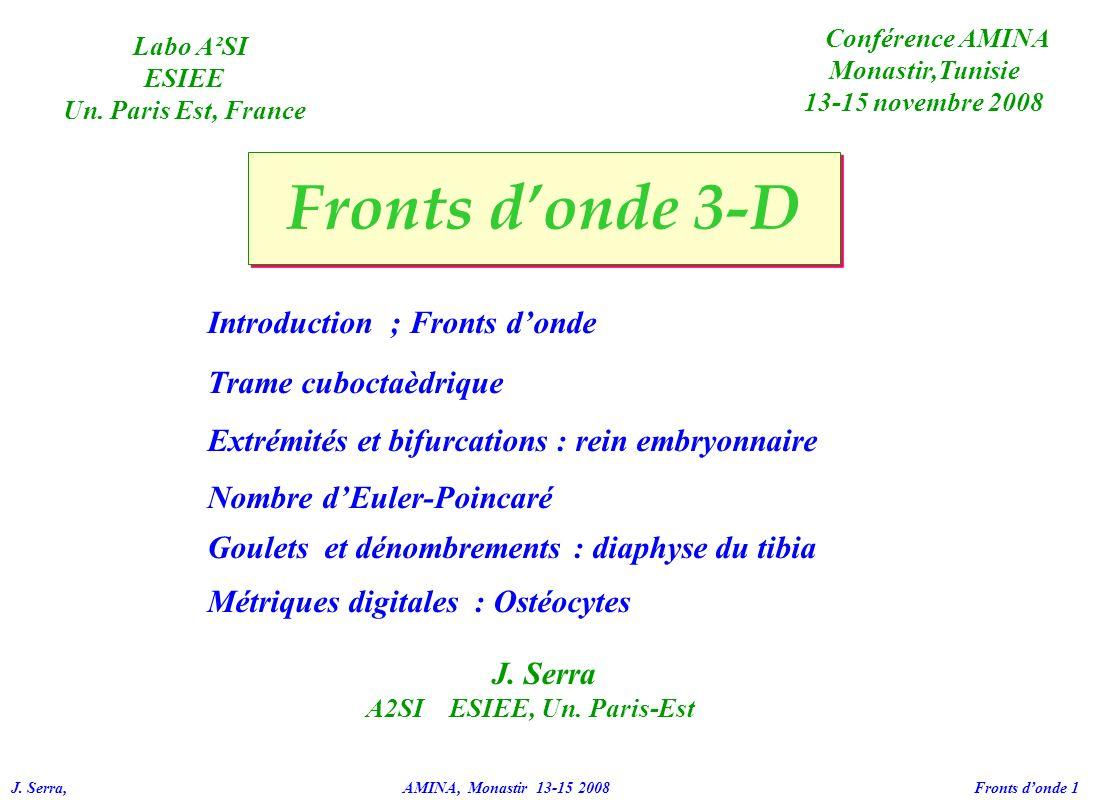 J. Serra, AMINA, Monastir 13-15 2008 Fronts donde 1 Fronts donde 3-D Introduction ; Fronts donde Trame cuboctaèdrique Extrémités et bifurcations : rei
