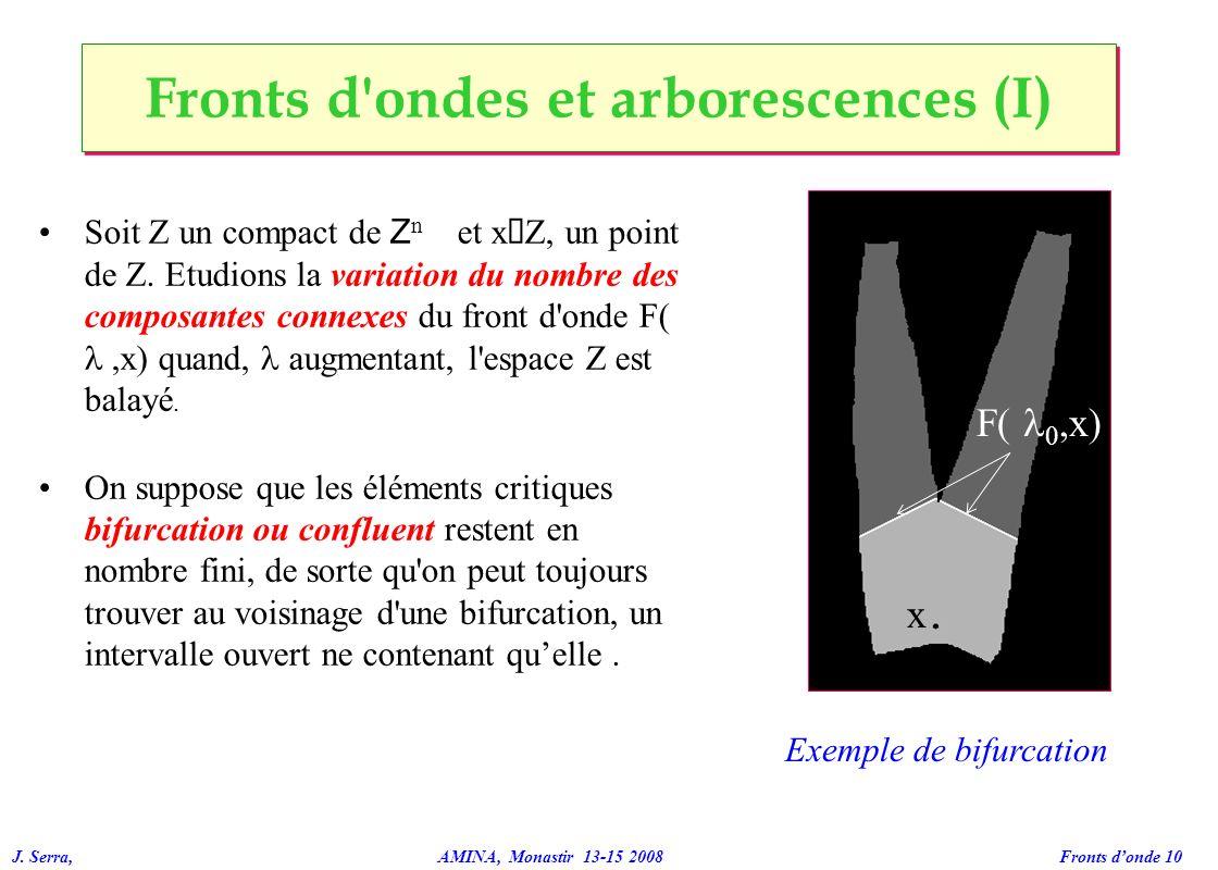 J. Serra, AMINA, Monastir 13-15 2008 Fronts donde 10 Fronts d'ondes et arborescences (I) Soit Z un compact de Z n et x Î Z, un point de Z. Etudions la
