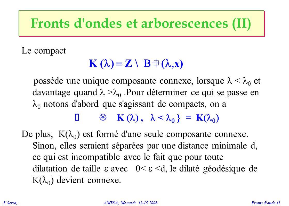 J. Serra, AMINA, Monastir 13-15 2008 Fronts donde 11 Fronts d'ondes et arborescences (II) Le compact K Z \ ° x) possède une unique composante connexe,