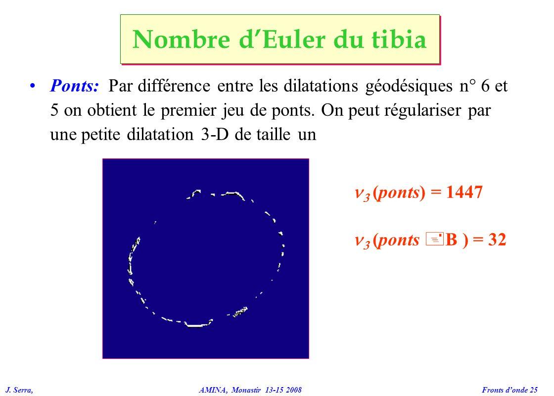 J. Serra, AMINA, Monastir 13-15 2008 Fronts donde 25 Ponts: Par différence entre les dilatations géodésiques n° 6 et 5 on obtient le premier jeu de po