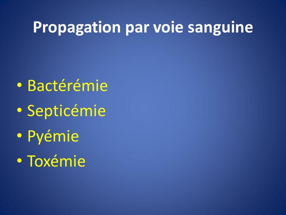 Propagation par voie sanguine Bactérémie Septicémie Pyémie Toxémie