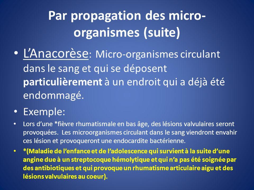 Par propagation des micro- organismes (suite) LAnacorèse : Micro-organismes circulant dans le sang et qui se déposent particulièrement à un endroit qu