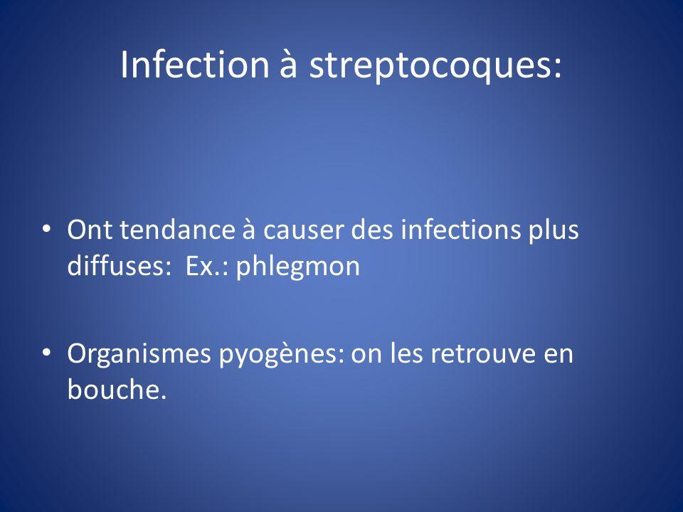 Infection à streptocoques: Ont tendance à causer des infections plus diffuses: Ex.: phlegmon Organismes pyogènes: on les retrouve en bouche.