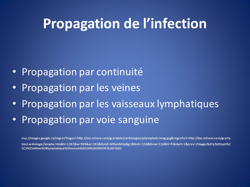 Propagation de linfection Propagation par continuité Propagation par les veines Propagation par les vaisseaux lymphatiques Propagation par voie sangui