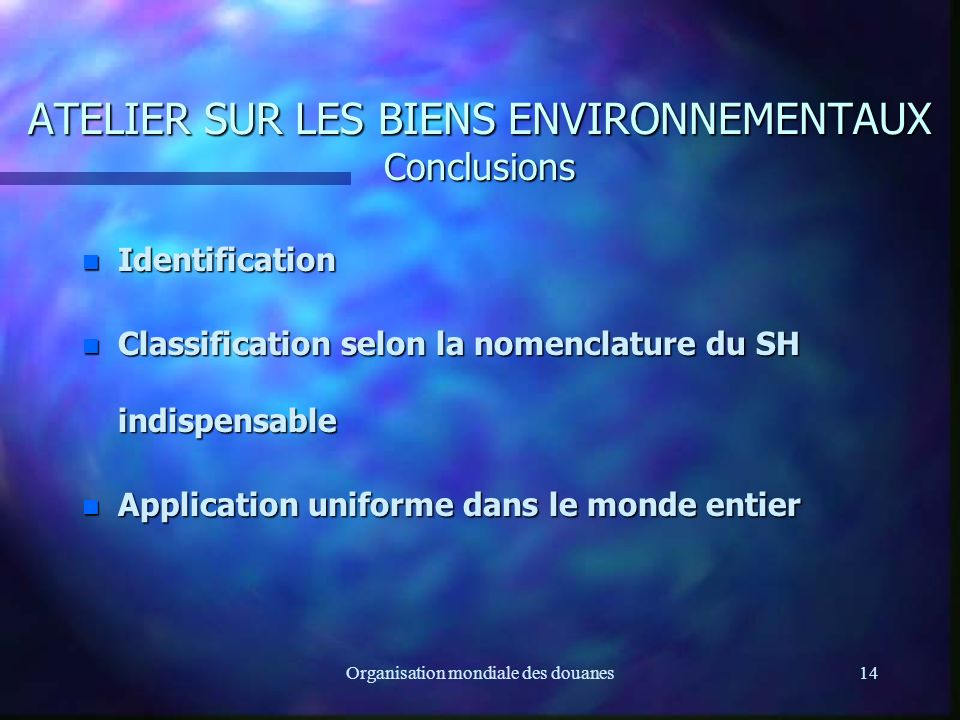 Organisation mondiale des douanes14 ATELIER SUR LES BIENS ENVIRONNEMENTAUX Conclusions n Identification n Classification selon la nomenclature du SH indispensable n Application uniforme dans le monde entier