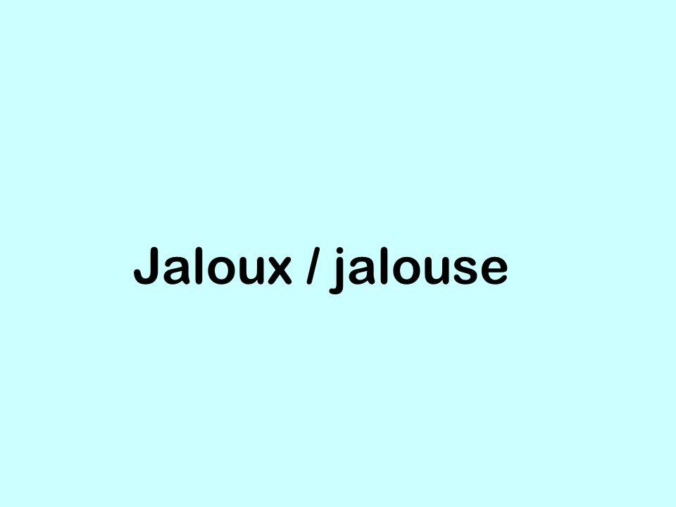 Jaloux / jalouse