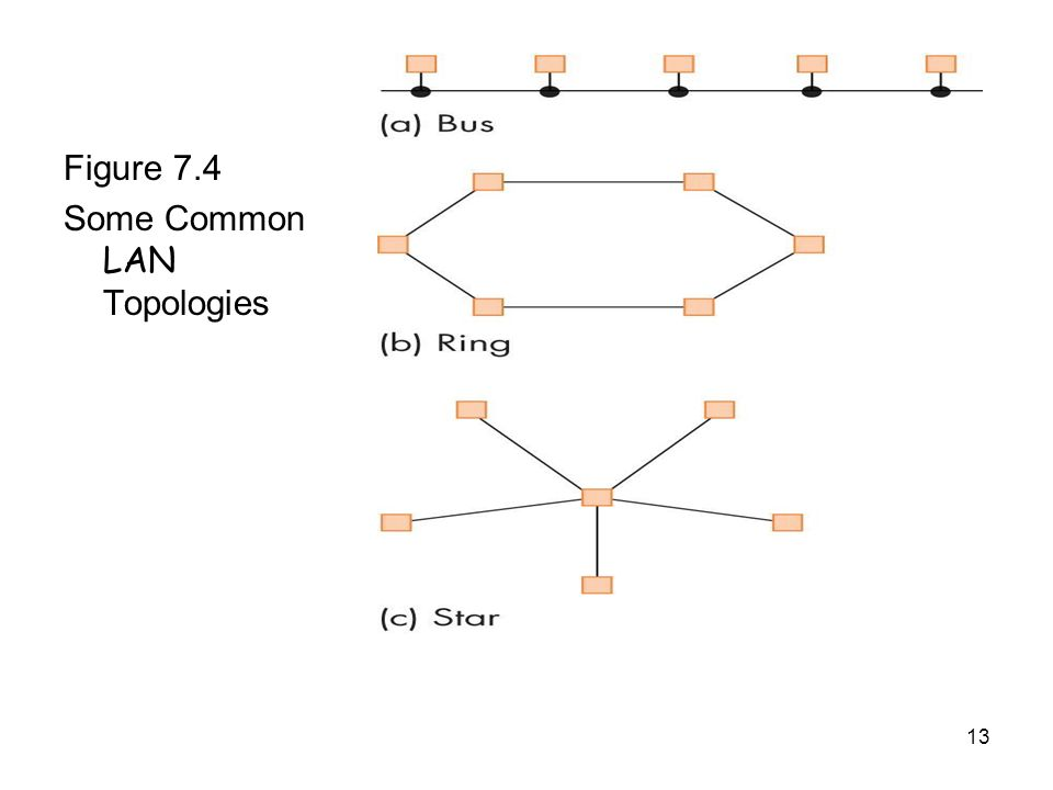 13 Figure 7.4 Some Common LAN Topologies