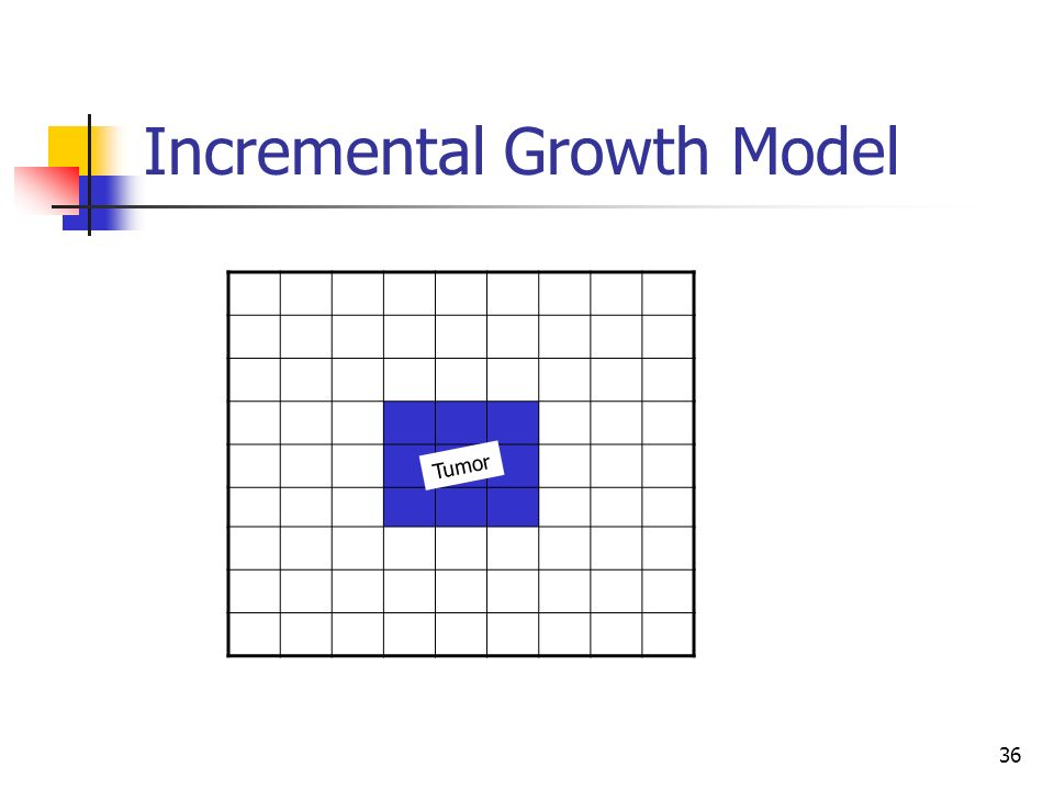 36 Incremental Growth Model Tumor