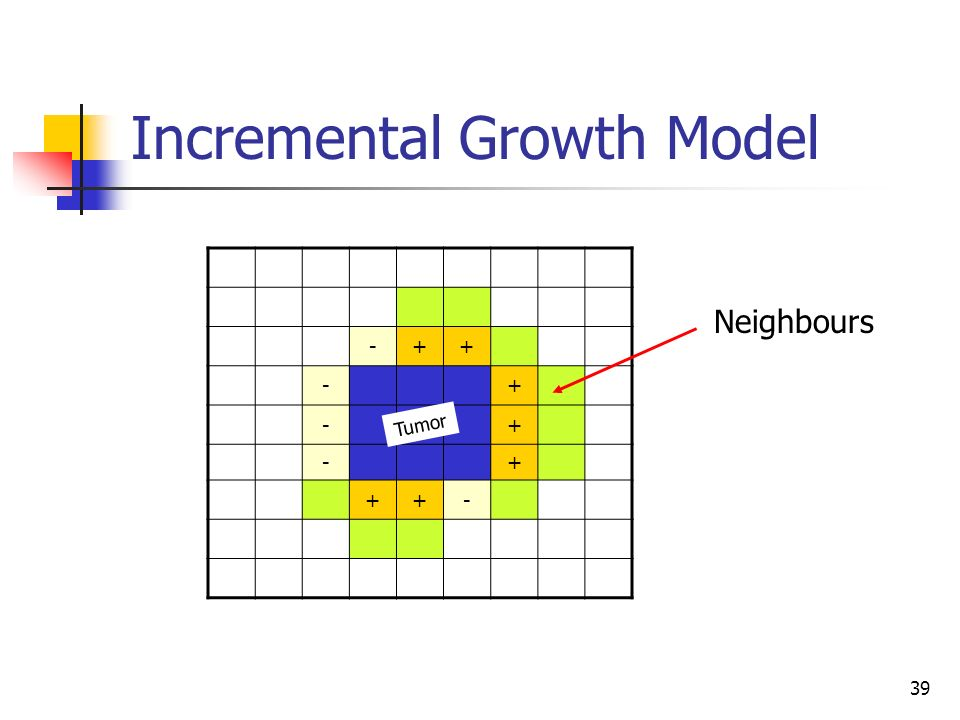 39 Incremental Growth Model -++ -+ -+ -+ ++- Tumor Neighbours