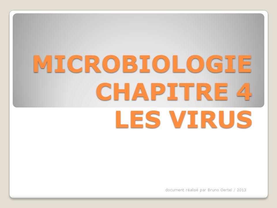 PLAN DU CHAPITRE I POURQUOI SINTERESSER AUX VIRUS II TAILLE DES VIRUS III STRUCTURE DES VIRUS 1)Les principaux éléments 2)Exemple de virus : le bactériophage IV REPRODUCTION DES VIRUS document réalisé par Bruno Oertel / 2013