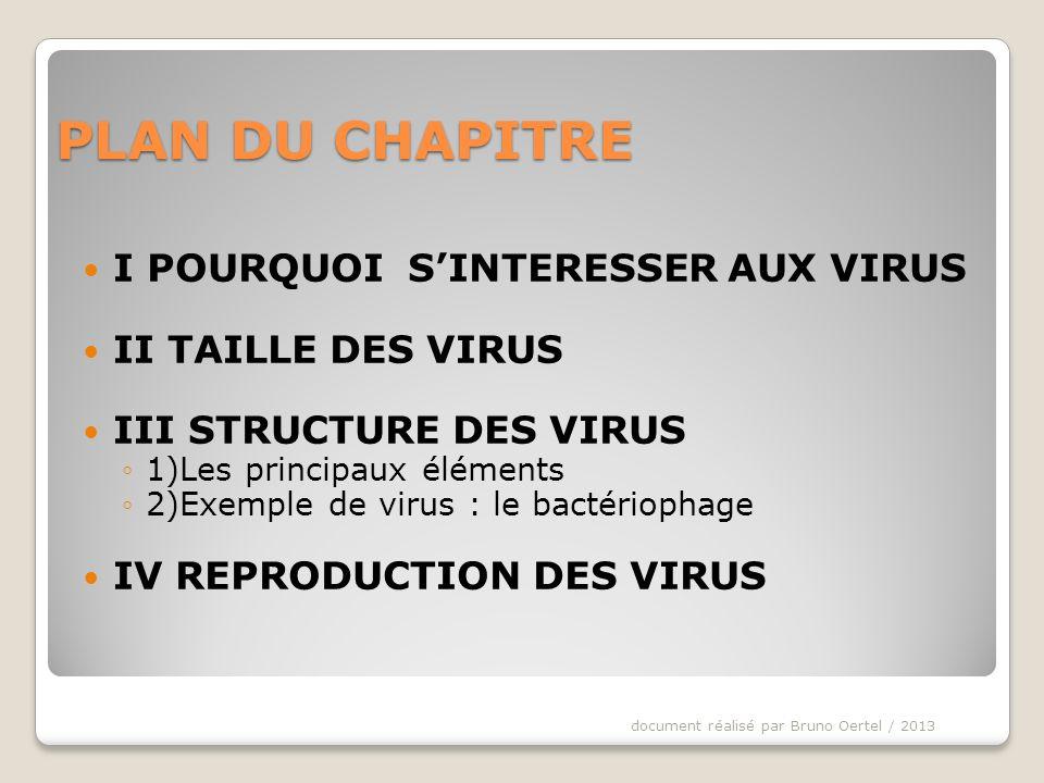 La structure des virus est composée de 2 ou 3 éléments : 1- Les gènes du virus : génome document réalisé par Bruno Oertel / 2013