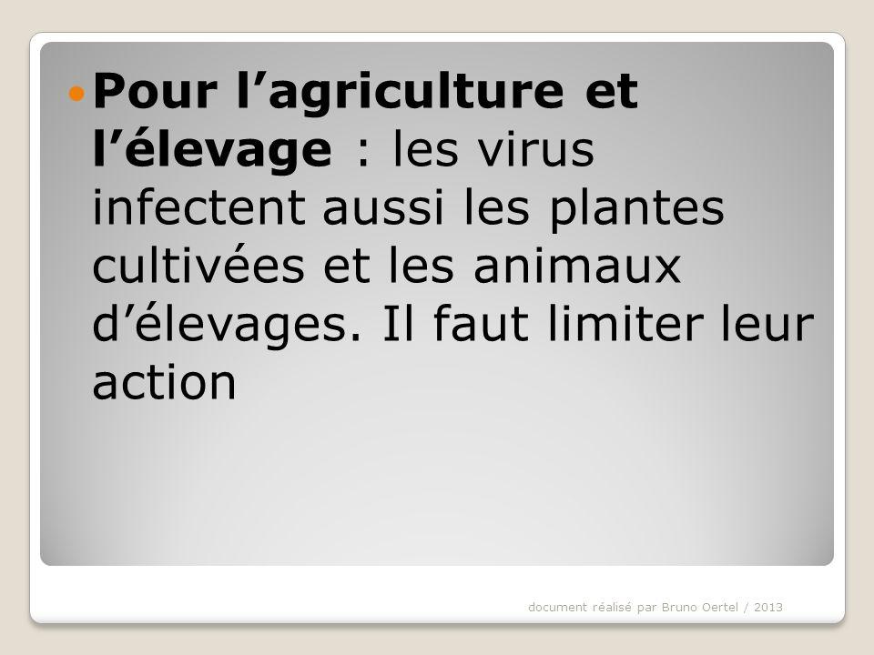 (III) 2) Un exemple de virus : le bactériophage Document 5 : Le bactériophage 1.