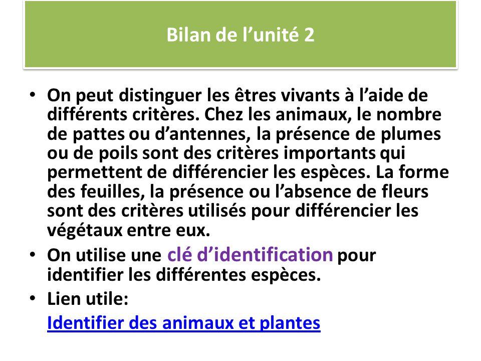 Bilan de lunité 2 On peut distinguer les êtres vivants à laide de différents critères.