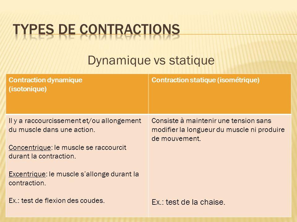 Dynamique vs statique Contraction dynamique (isotonique) Contraction statique (isométrique) Il y a raccourcissement et/ou allongement du muscle dans u
